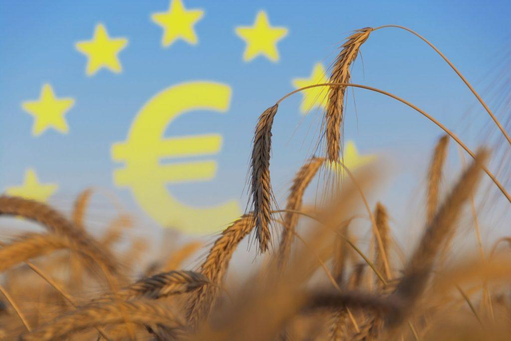 Erfahrungen bündeln, austauschen und gemeinsam an Lösungen für die intensive Landwirtschaft auf EU-Ebene arbeiten: Das war das Ziel der ersten strategischen Konferenz mit Landwirtschaftministerin Barbara Otte-Kinast und einigen Vertretern aus EU-Ländern in Brüssel.