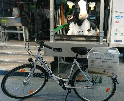 Fahrrad mit Kuhflecken