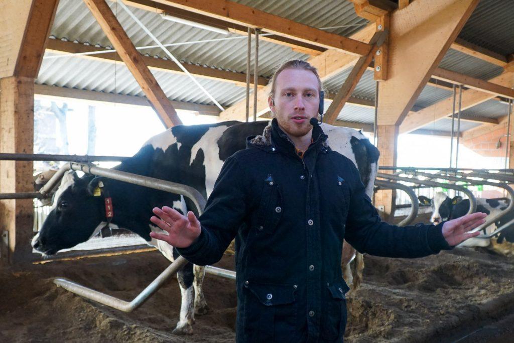 Timo im Kuhstall