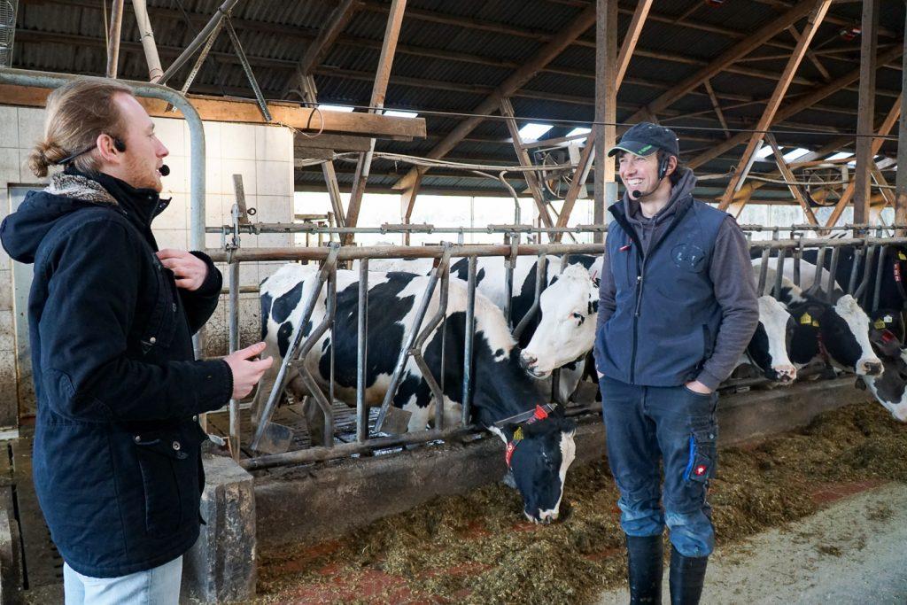Timo und Sven im Kuhstall