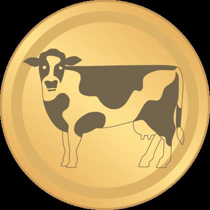 KuhBit Münze