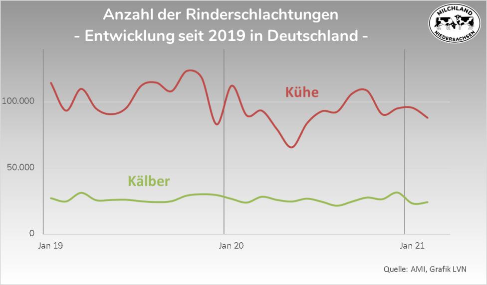 Grafik Anzahl Rinderschlachtungen in Deutschland 2019-2021