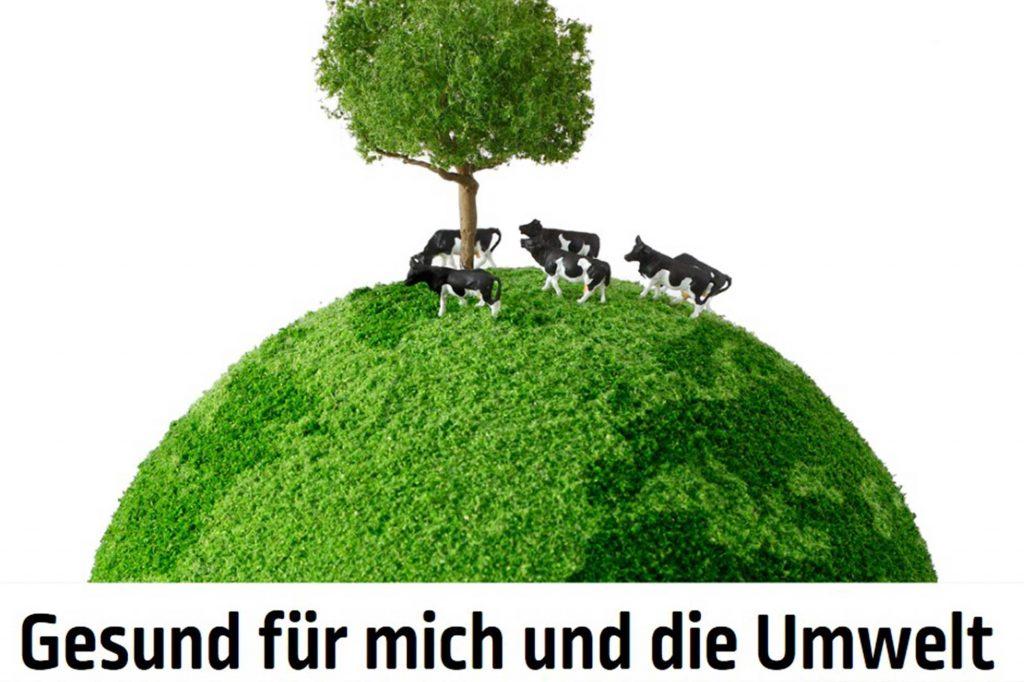 Illustration Unterrichtsmaterial Milch und Umwelt