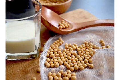 Glas mit Sojamilch und Sojabohnen